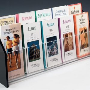 Acrylic multiple brochure holder for ten 4 x 9 brochures